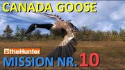 TheHunter Canada Goose Mission 10