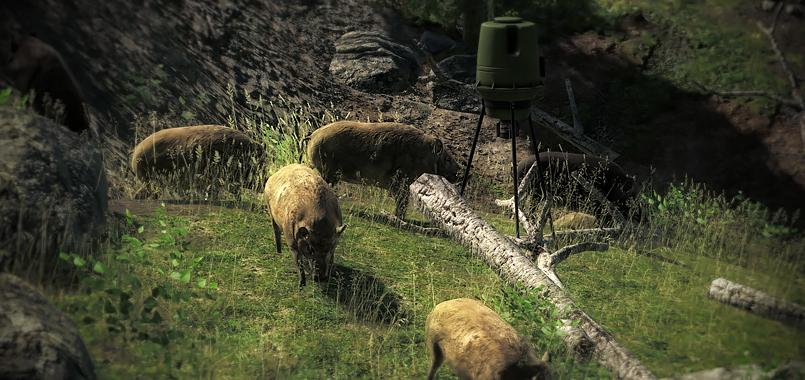 Baited hogs