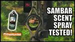 Sambar Deer Scent Spray Tested! - theHunter Hunting Game