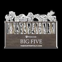 Big5 silver