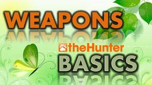 TheHunter BASICS - Weapons
