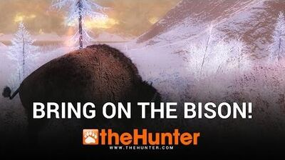 TheHunter 2016 - Whiterime Ridge - ON THE BISON!