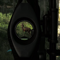 Compound bow sight closeup