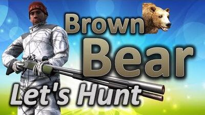 TheHunter Let's Hunt BROWN BEAR (big bear 28