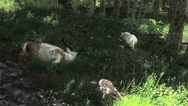 Rottenreaper piebald and albino elks