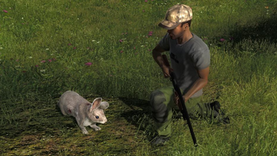 Trophy cottontail