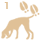 Coonhound skill 03