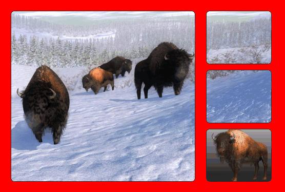 File:Species bison.png