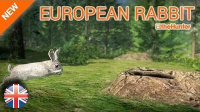 The Hunter 2015 Full HD - NEW ANIMAL European Rabbit - ENG