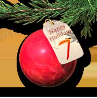Holidays 2015 7