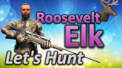 TheHunter Let's Hunt ELK