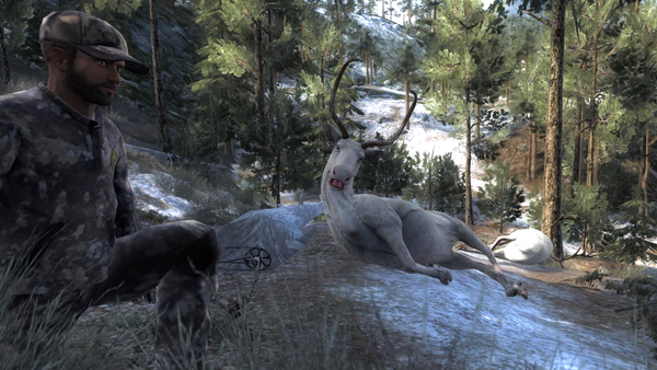 Morgezuma two albino reindeer