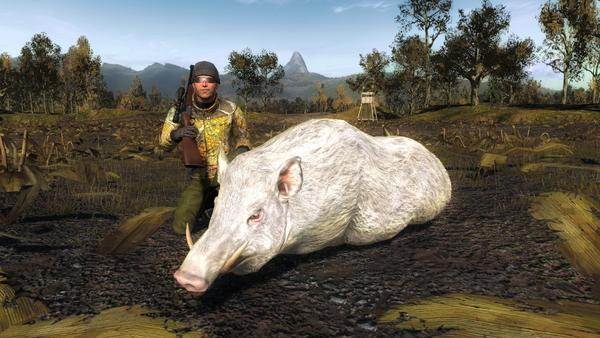 Sarroth albino wild boar 1126