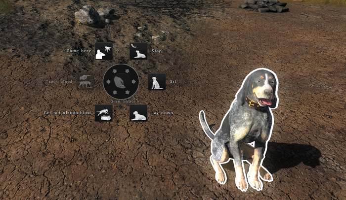 Coonhound command wheel