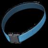 Dog collar blue