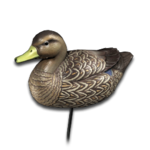 Decoy american black duck female