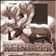 Rank badge reindeer