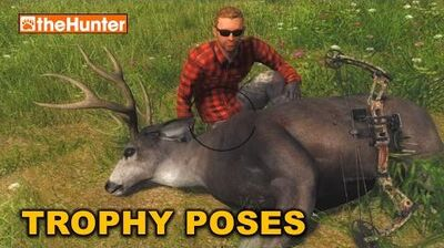 TheHunter ★ TROPHY POSES and Camera Filters