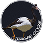 Magpie goose badge
