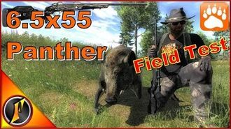 6.5x55 Panther Bolt-Action Rifle Field Test theHunter Classic 2017