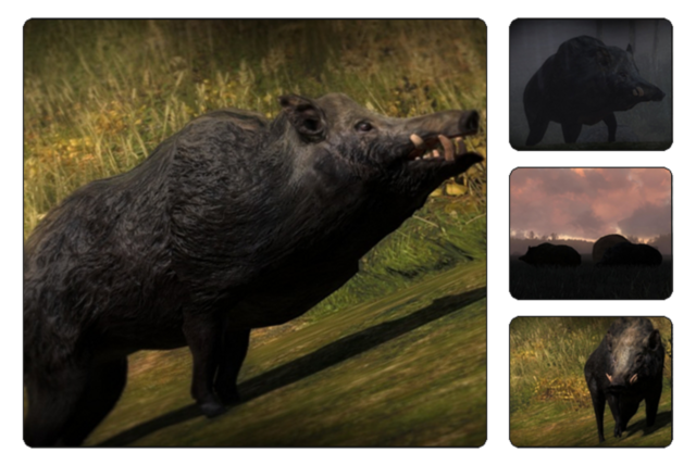 File:Species wild boar 700.png