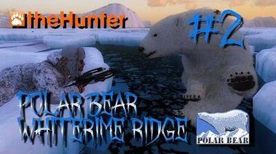 Mills Hunting Adventures - Episode 2 (Polar Bear on Whiterime)