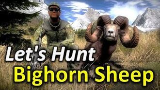 TheHunter Let's Hunt BIGHORN SHEEP