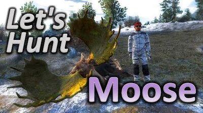 TheHunter Let's Hunt MOOSE (monster moose 221 included)