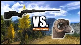 TheHunter - 6.5x55 Panther vs. Bighorn Sheep