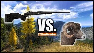 TheHunter - 6.5x55 Panther vs