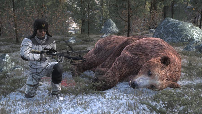 Brown bear the hunter wikia fandom powered by wikia hunting tactics publicscrutiny Choice Image
