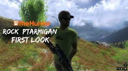 **First Look** Rock Ptarmigan (TheHunter Gameplay)