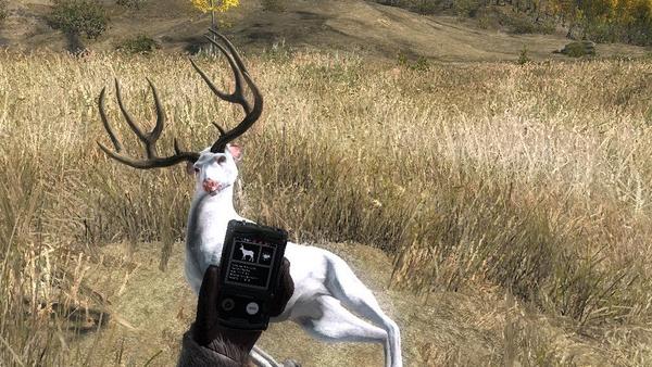 DeadClopz albino mule 226