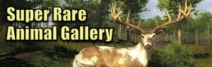 Super rare animal gallery