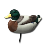 Decoy mallard male 256