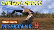 TheHunter Canada Goose Mission 9