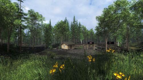 Darkwood Lodge