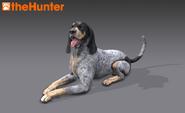 Scenthound render