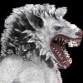 Werewolf male albino