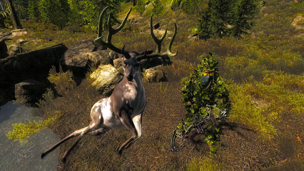 Cachuera piebald mule 230