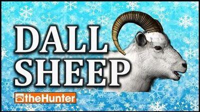 TheHunter Dall Sheep First Look
