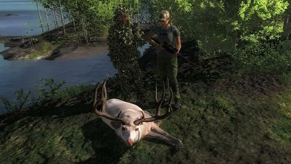 Nikita888 albino blacktail 196