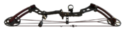 Compound bow red dragon oriental