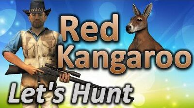 TheHunter Let's Hunt RED KANGAROO