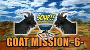 TheHunter Hunting Game - Feral Goat Mission 6 Classic Bows