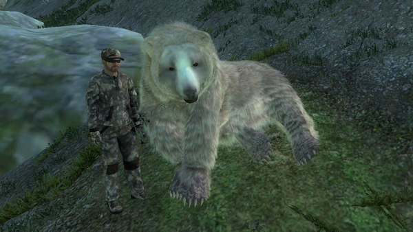 V e szedelem albino brown bear 28