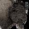 Bison male common