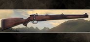 2017 08 bolt action rifle stutzen
