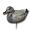 Decoy gadwall male