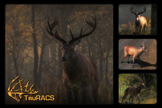File:Species red deer 700.png